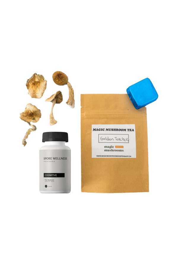 First Timer Magic Mushroom Kit: Psych 101 – An Introduction to Psychedelics